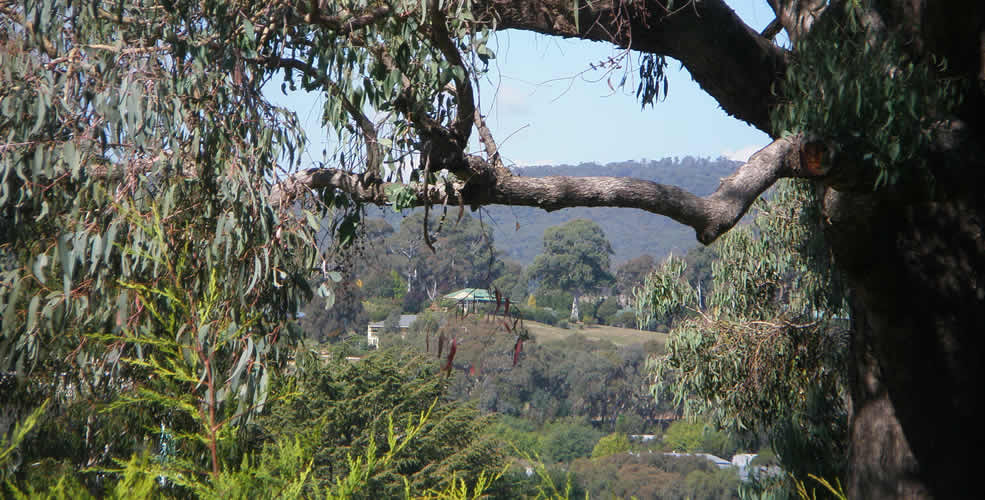 Beechworth Art Retreat - Town View